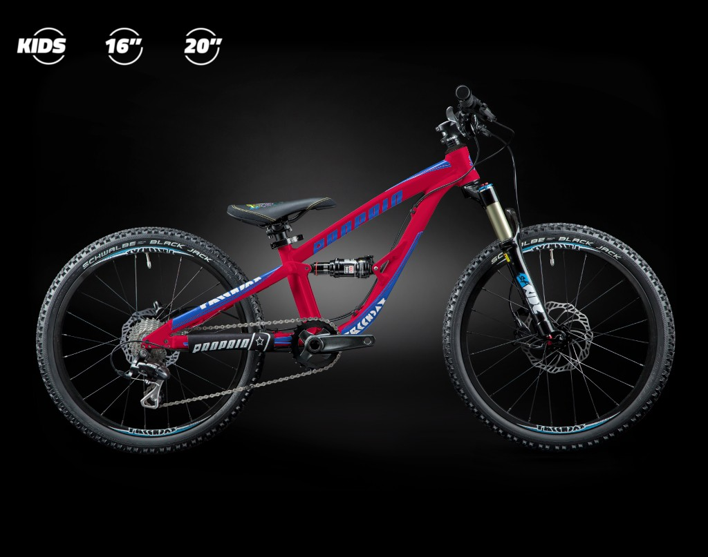 20 Quot Full Suspension Bikes The Bike Dads